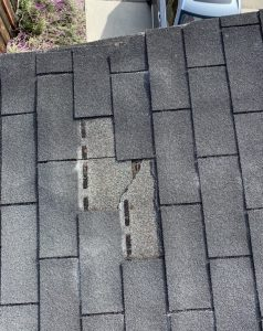 Asphalt shingles can prematurely fall off a roof installed improperly by an unknowledgeable roofing contractor in Santa Cruz California.